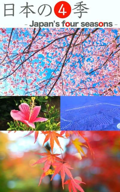 日本の四季 Japan's four seasons