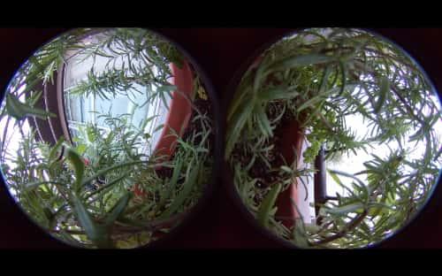 VR動画を動画編集ソフトで変種する方法